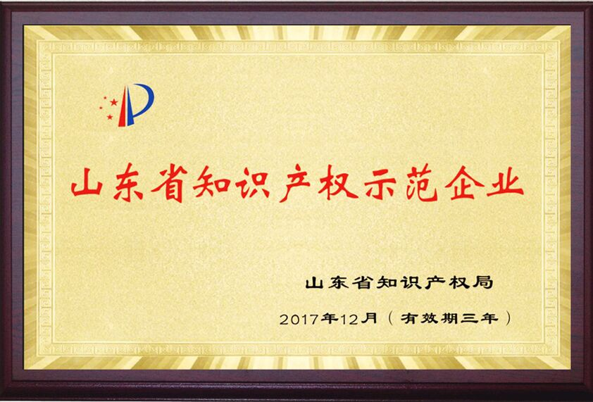 山东省知识产权师范单位